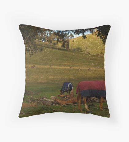 A Late Afternoon Rural Scape Throw Pillow