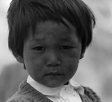 bodhi | children of the himalayas by tim buckley | bodhiimages
