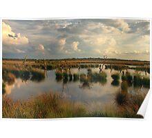 Wetland Fochtelooerveen Poster