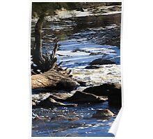 Bells Rapids Swan Valley WA Poster
