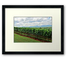 Blackstock winery Framed Print