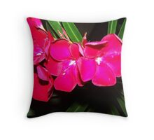 Ditch Beauty- the RED beauty Throw Pillow