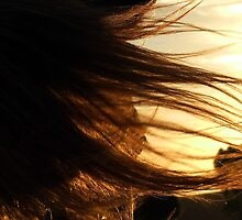 Flyaway chestnut veil by Penny Kittel