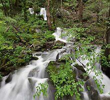 Wet Weather Cascades II by Gary L   Suddath
