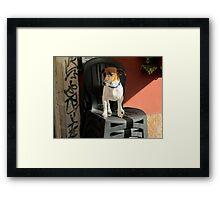 Jack le Chien Framed Print