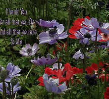 Pretty Poppy - Thank You Card by judygal