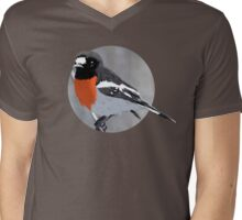 Scarlet Robin Mens V-Neck T-Shirt