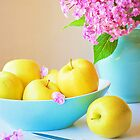 Yellow Apples by Colleen Farrell
