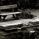 Empty bench at Silent Pool by Richard Pitman