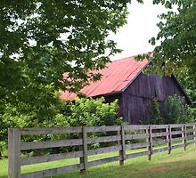 ANOTHER OLD INDIANA BARN by Pauline Evans