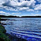 NH Landscape Seacoast by Edward Myers