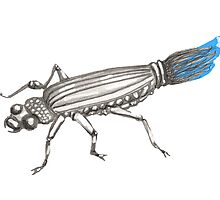 Buggin'  brush beetle by Vicki Bower