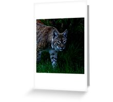 The Glamour Cat Greeting Card