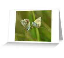 Two Blues Greeting Card