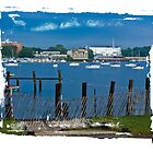 Navesink Harbor by Gene Hilton