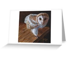 Baby Barn Owl Greeting Card