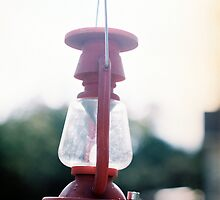 Decorative lantern in Rose Hill by agenttomcat