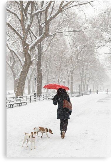 Winter Walk by Ellen McKnight
