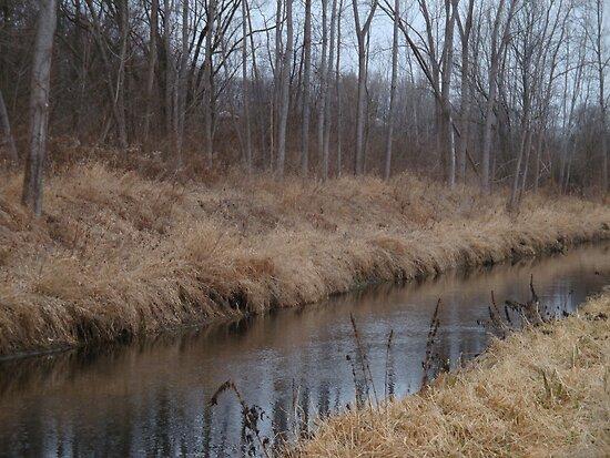 A Creek Flows Through It by dasSuiGeneris