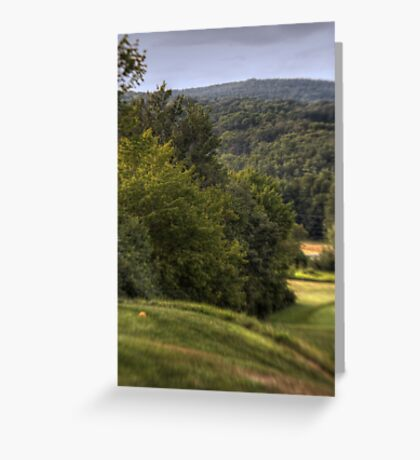 Swaths of Green Greeting Card