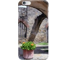 Pot of Flowers with Shadows and Arches  iPhone Case/Skin