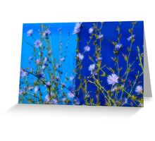 Blue Bonnets on the side walk Greeting Card