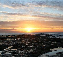 Yellow Sky - Reflecting Sunrise by Danielleh