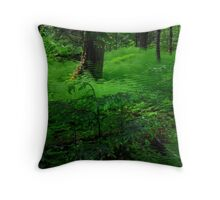 Berg Lake Trail 2 Throw Pillow