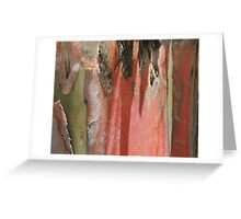 natures palette Greeting Card