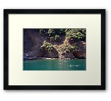 Swimming In The Green Framed Print