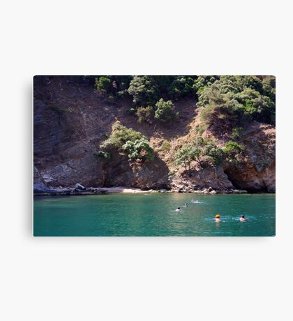 Swimming In The Green Canvas Print