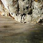 wood on wood II by Michelle De Salis