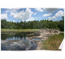 Beaver Lodge Lake Poster