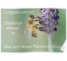 Bee and Wasp Passions Poster