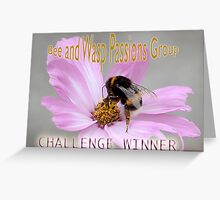 challenge entry Bee and Wasp Passions Greeting Card