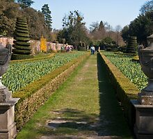 The Long Garden: Cliveden Estate, Buckinghamshire, England, UK by DonDavisUK