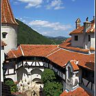 Bran Castle  by adrisimari