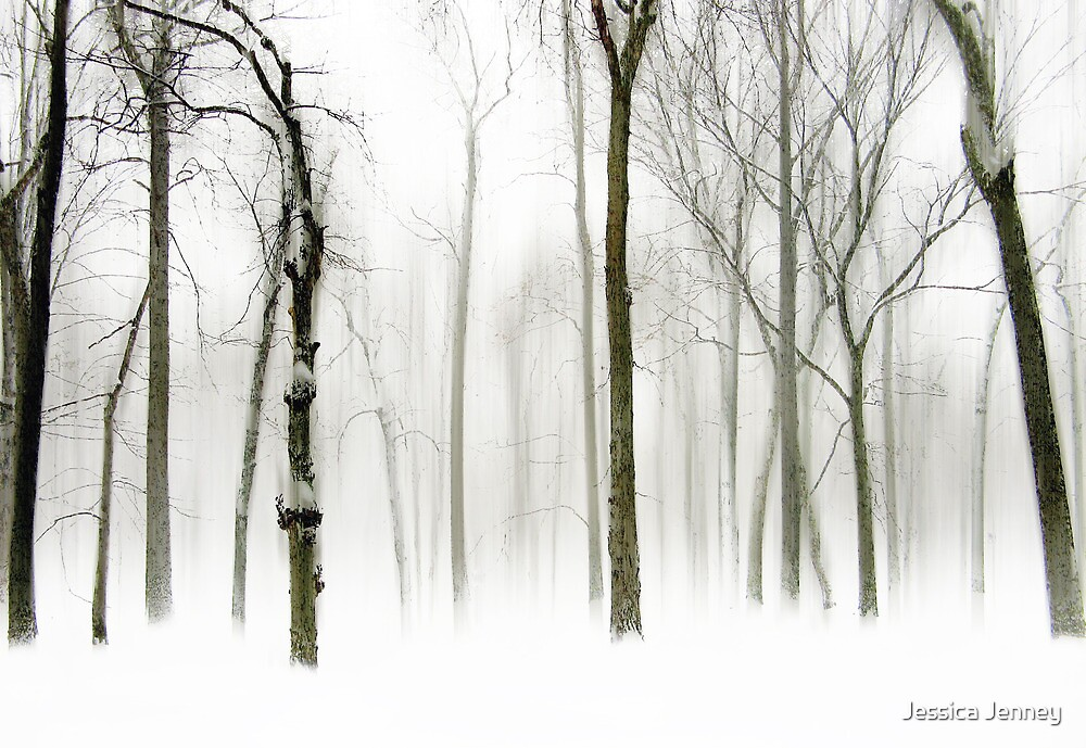 Snow Squall   by Jessica Jenney