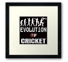 evolution of cricket  Framed Print