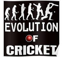 evolution of cricket  Poster