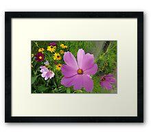 Floral Potpourri Framed Print
