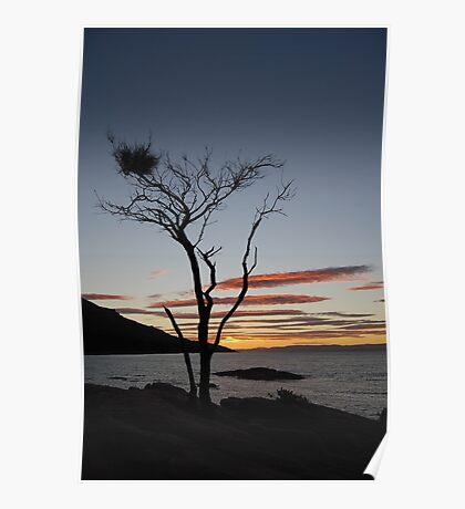 Sunset in Tasmania Poster