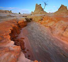 Destructive Forces of Creation by David  Hibberd