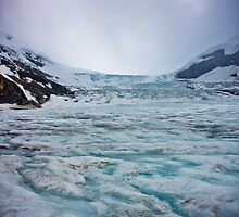 Athabasca Glacier in Banff National Park by Dean  Wu