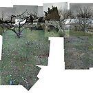 Provance landscape in spring by Goran Medjugorac