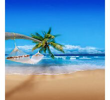 Palm tree on Exotic Beach Photographic Print