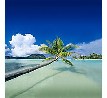 Exotic Holiday Destination - Post card Photographic Print