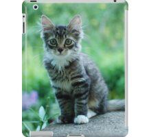 Kit iPad Case/Skin