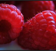 Berry Closeup by Mattie Bryant