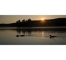 Common Loon calling the daybreak Photographic Print